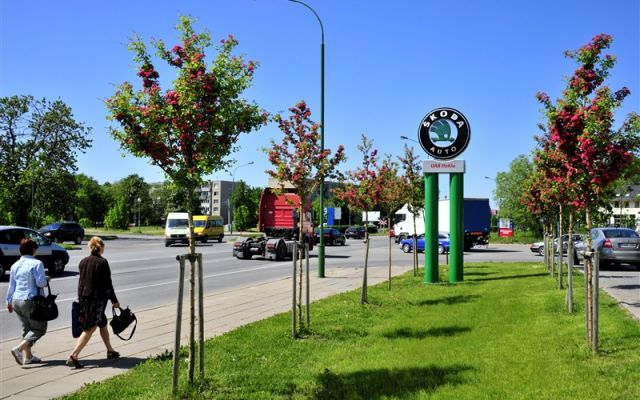 UAB HOKLA | Klaipėda
