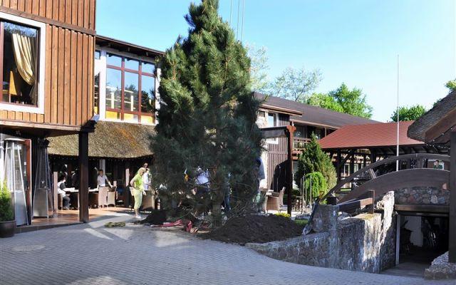 Viešbutis Pušų paunksnėje | Palanga