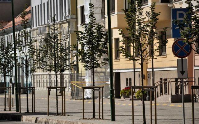 Liepų gatvė | Klaipėda